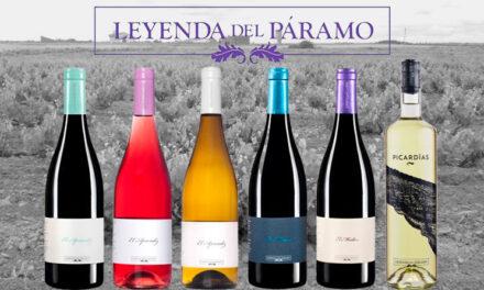 Leyenda del Páramo: vinos legendarios, autóctonos y felices